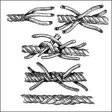 epissure dessin